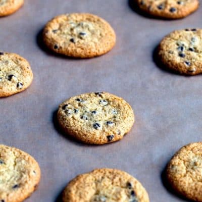 Paleo Chocolate Chip Cookies (Grain-Free & Dairy-Free)